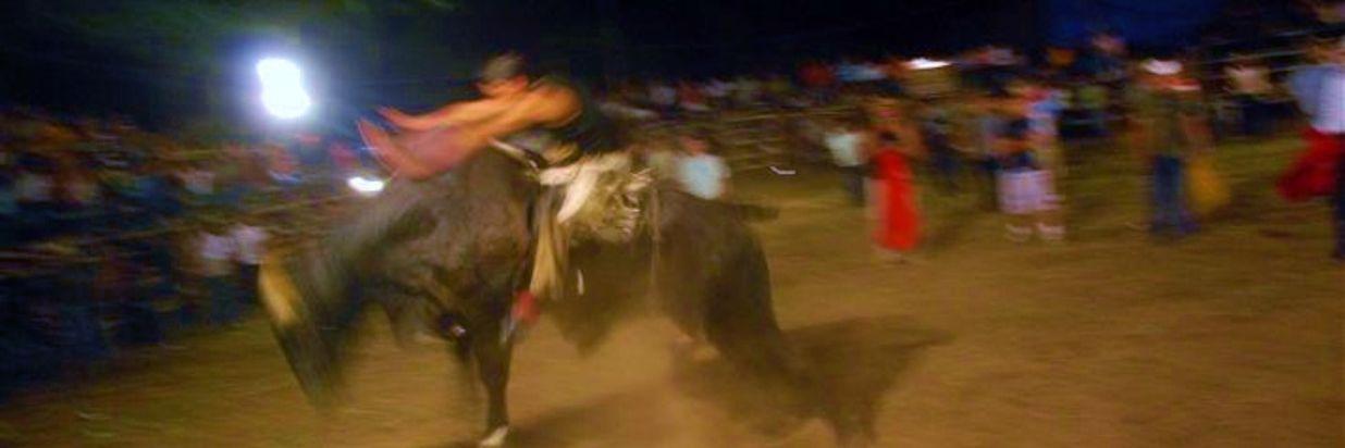 Costa Rican Bull Riding