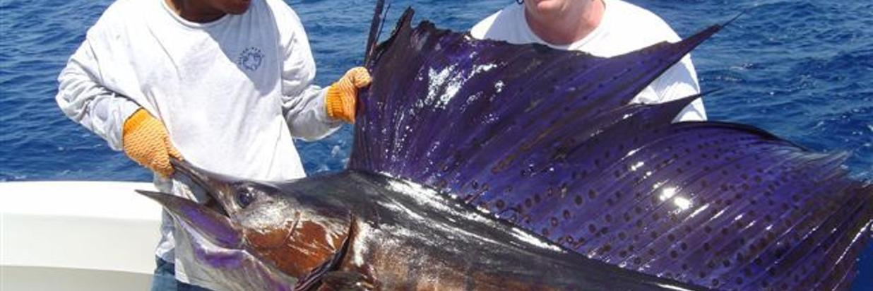 Sport Fishing in Costa Rica