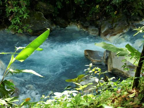 Visiting Costa Rica Blue Rivers: Highlight Of a Costa Rica Vacation