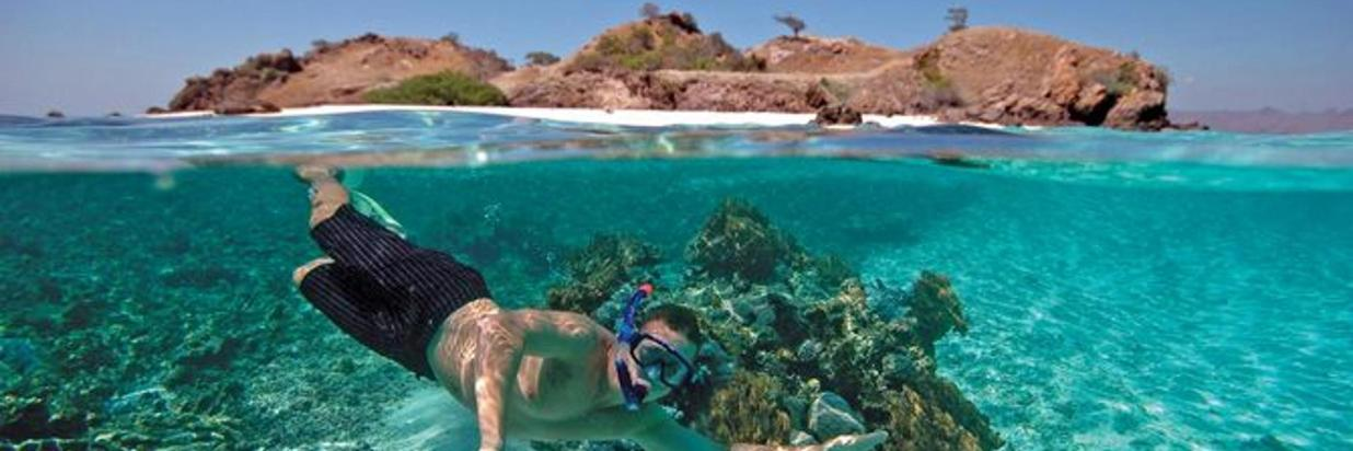 Diving and Snorkeling Vacations in Costa Rica, Learn To Dive