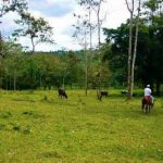 Blue River Estate Photos: Rincon de la Vieja, Costa Rica & surroundings