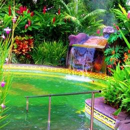 Blue River Resort & Hot Springs: Membership Privileges
